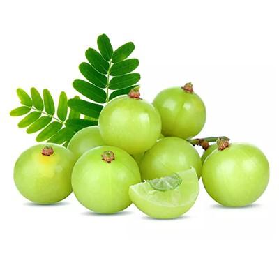 Amla Fruit Extract
